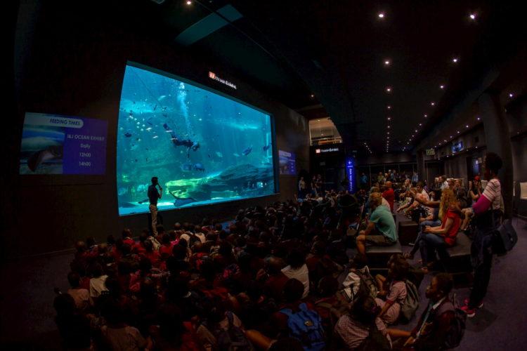 aquarium CPT A (2)