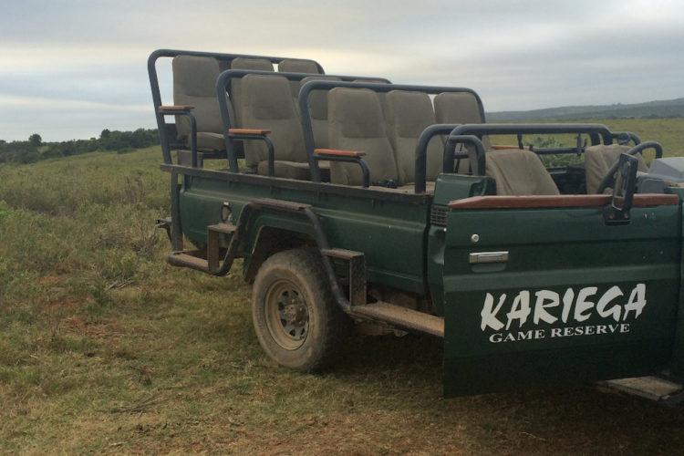 kariega - addo np - safari (1)