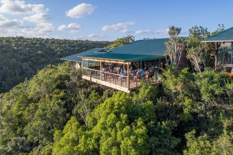 kariega main lodge - Addo - Safari (1)